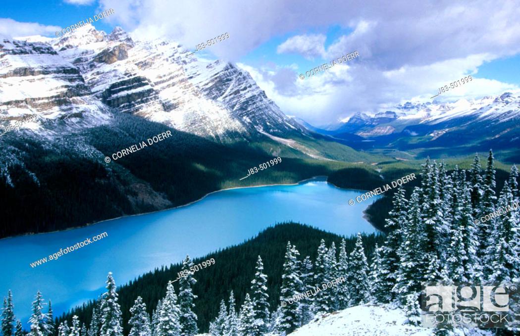 Stock Photo: Peyto Lake and Rocky Mountains, Banff Narional Park. Alberta, Canada.