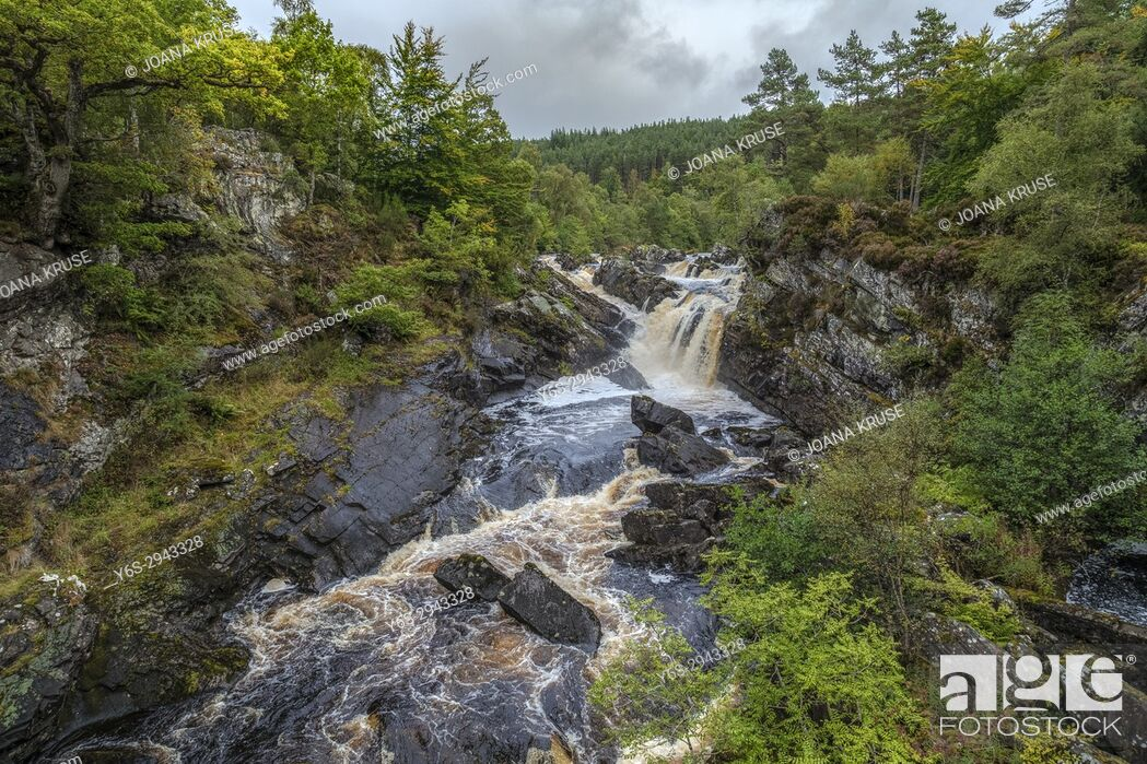 Stock Photo: Rogie Falls, Blackwater, Highlands, Scotland, United Kingdom.