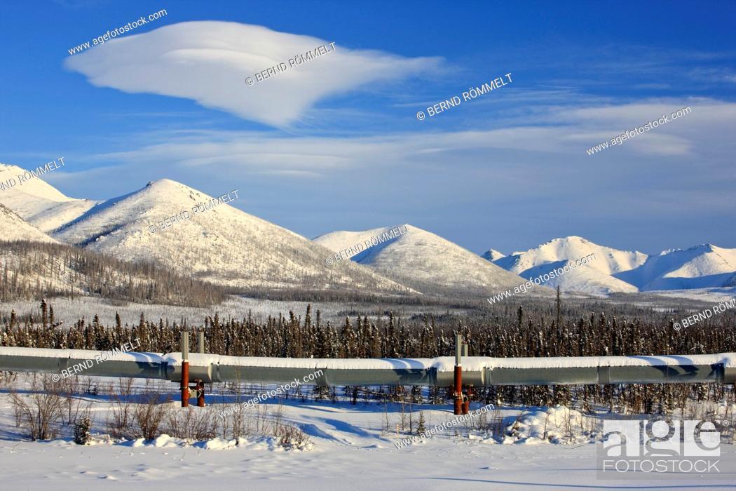Stock Photo: North America, the USA, Alaska, North Alaska, James Dalton Highway, Brooks Range, winter scenery, Alaska pipeline,.