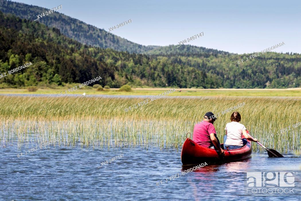 Stock Photo: Kayakers in Cerknica Lake, Slovenia.