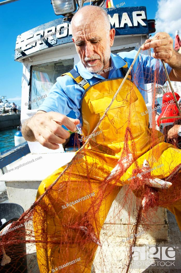Stock Photo: Fisherman taking fish out of nets.