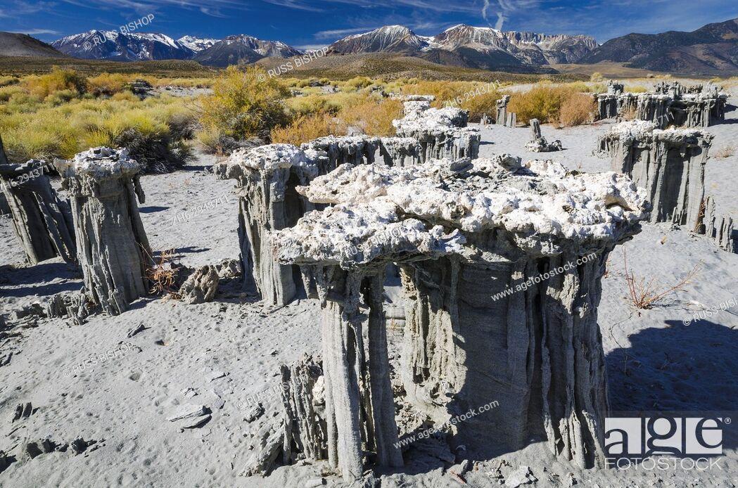 Imagen: Sand tufa formations on the south shore of Mono Lake, Mono Basin National Scenic Area, California USA.