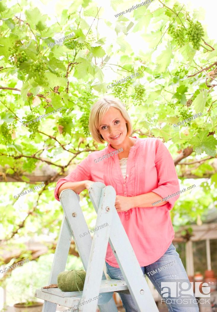 Stock Photo: Smiling woman on ladder below grapes growing on branches.