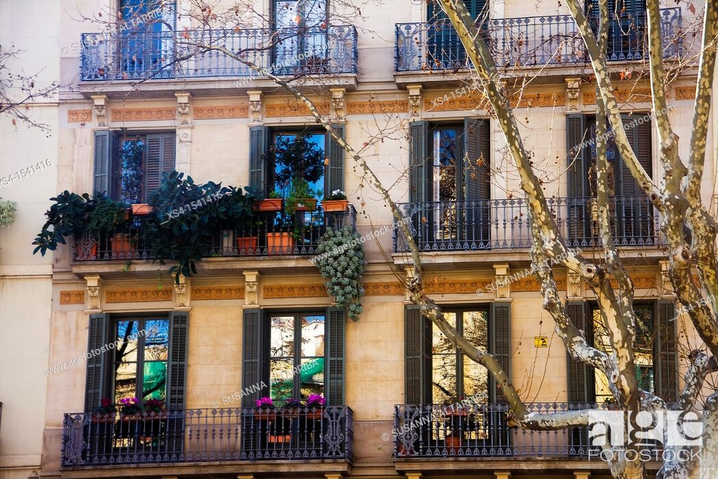Stock Photo: Balconies and windows with plants in Barcelona on Passeig San Joan, Barcelona, Spain, Europe.