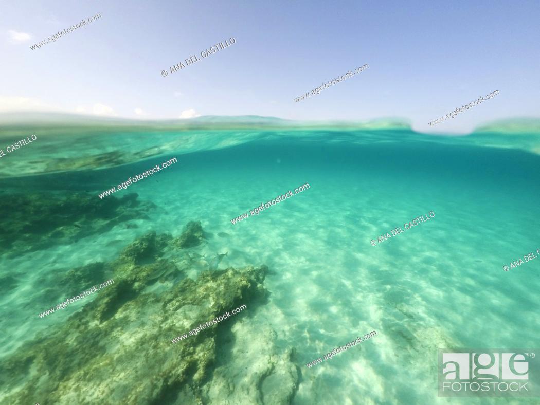 Imagen: Underwater the turquoise water in El Calo de San Agusti Formentera island Balearics Spain.