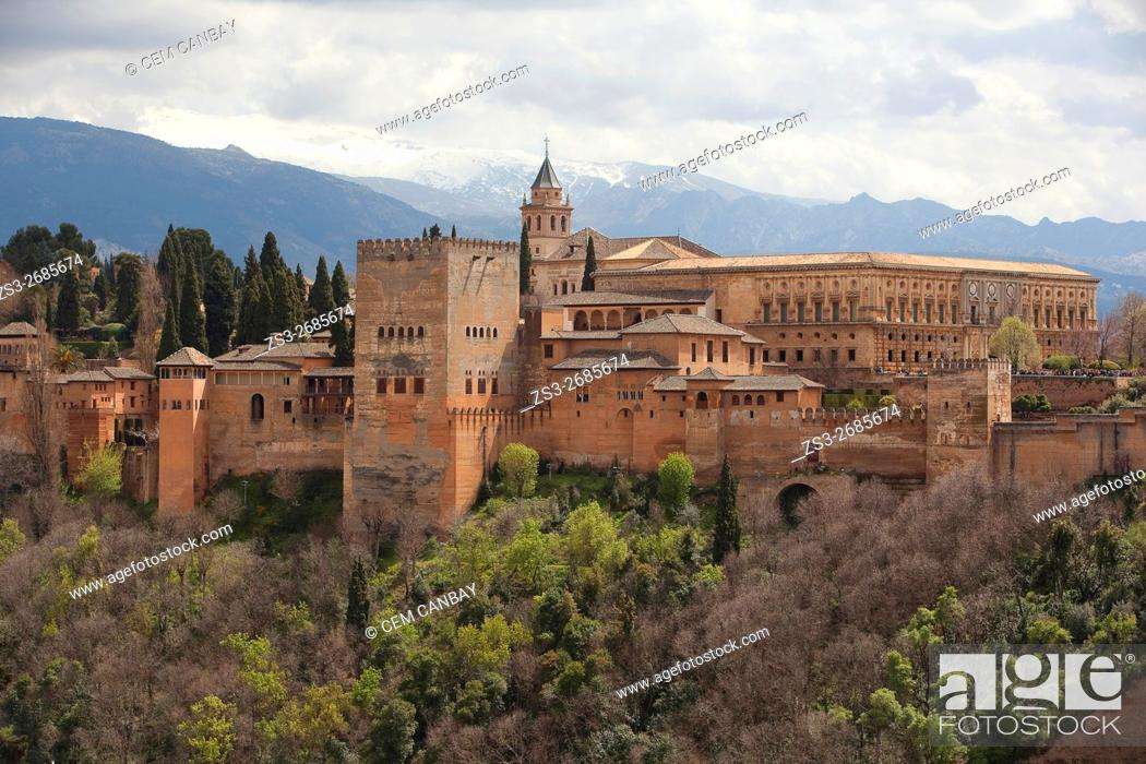 Imagen: View to the La Alhambra from Mirador de San Nicolas, Albaicin Neighborhood, Albaycin, Albayzin, UNESCO World Heritage Site, Granada, Andalucia, Spain, Europe.