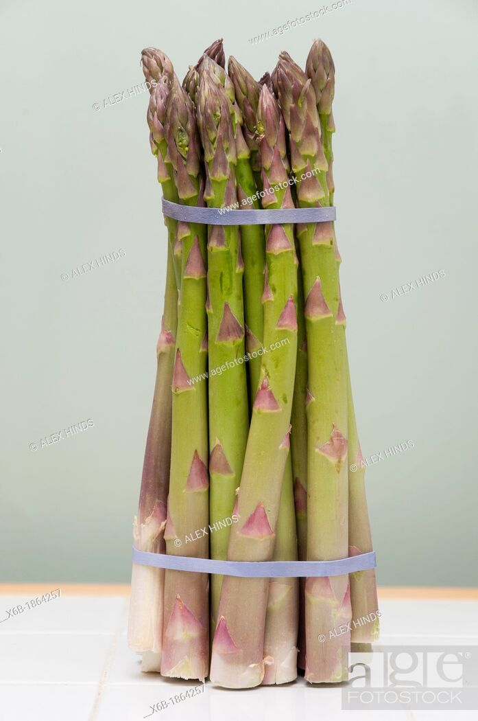 Stock Photo: Bunch of fresh asparagus spears.