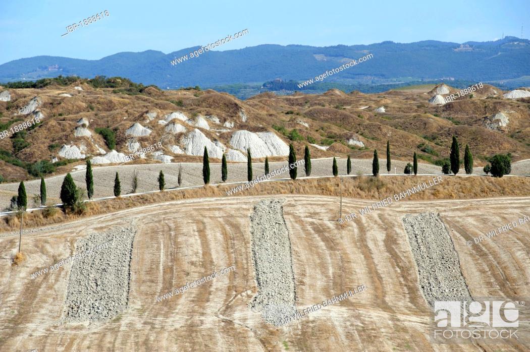 Stock Photo: Landscape south of Siena, with Biancane, dome-shaped formations, Crete Senesi, Tuscany, Italy, Europe.