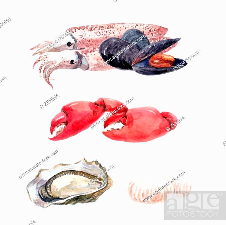 Stock Photo: Beautiful set with hand drawn watercolor sea food.