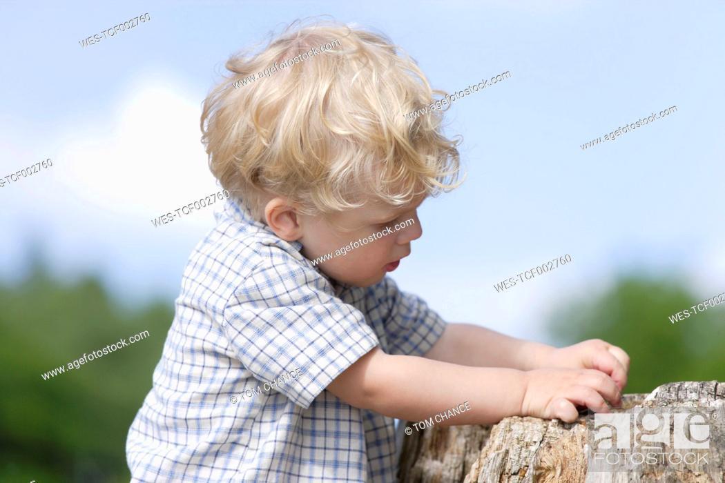 Stock Photo: Germany, Bavaria, Boy exploring tree trunk, close up.