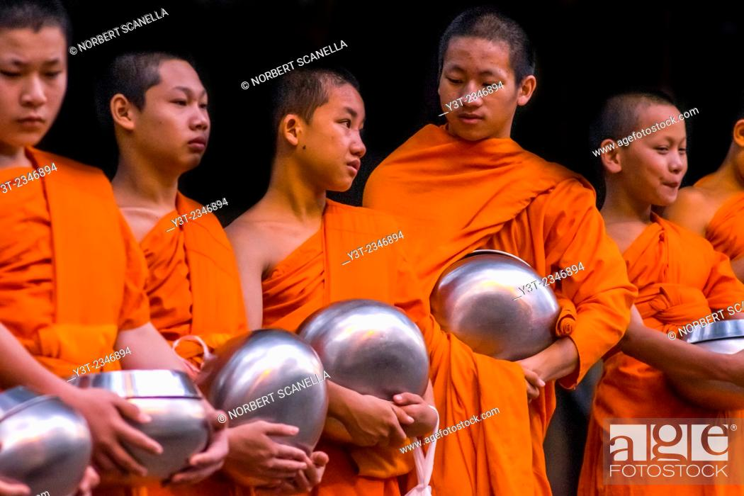 Stock Photo: Asia. Thailand, Chiang Mai. Young Buddhist monks on their morning procession for offerings of food near a monastery in the Huay Kaew area.