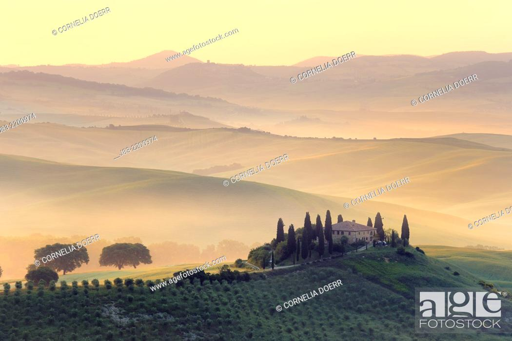 Stock Photo: Typical Tuscan farmhouse with cypress trees, Val d'Orcia, Orcia Valley, Tuscany Landscape, UNESCO world heritage site, San Quirico d'Orcia, Siena Province.