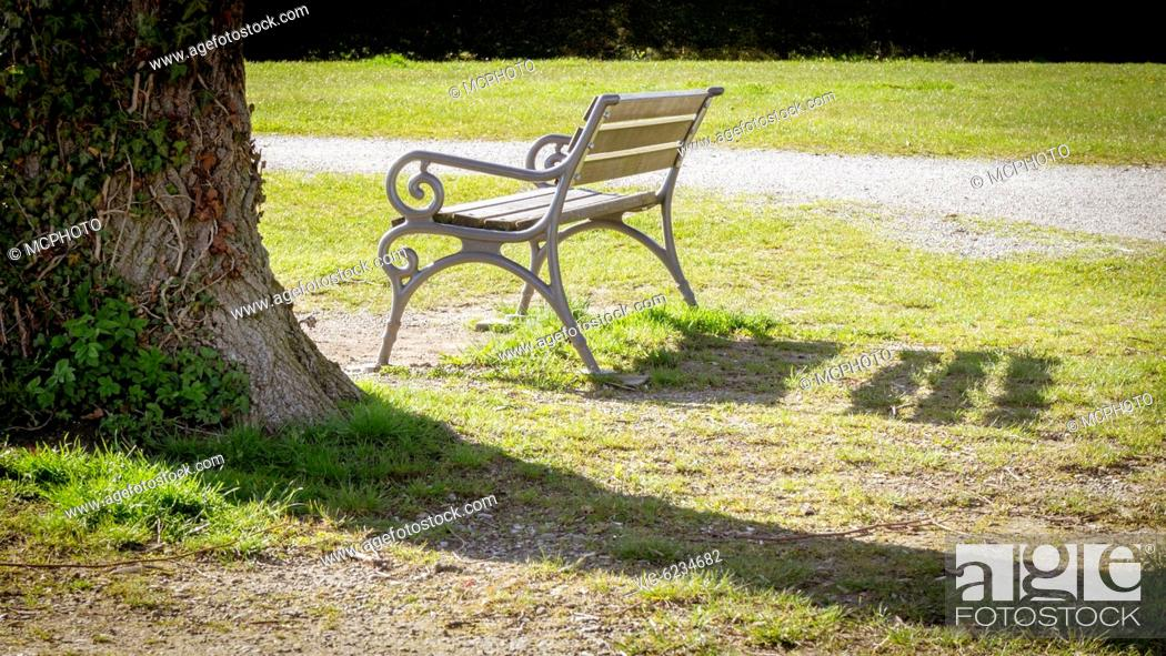 An Image Of A Lonely Bench In A Park 26 04 2012 Stock Photo