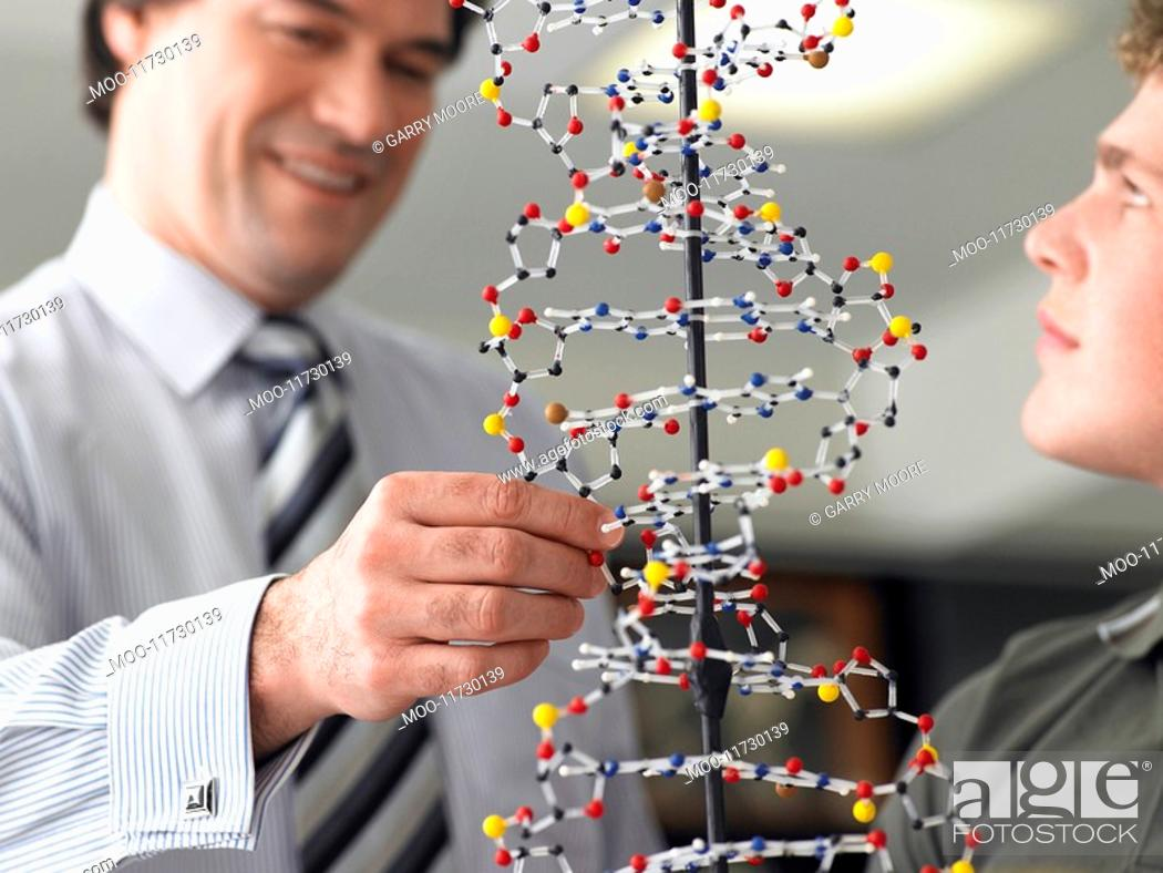 Stock Photo: Teacher looking at student's DNA model close up.