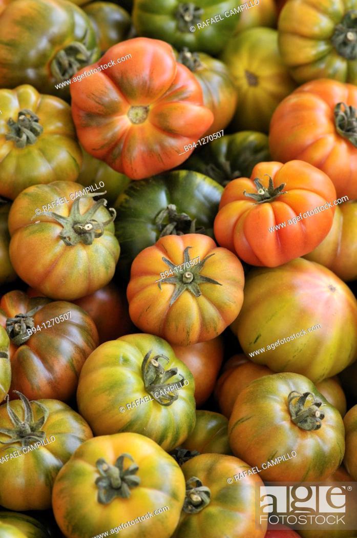 Stock Photo: Tomatoes. Campo dei Fiori square market, Rome, Italy.