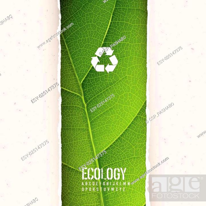 Stock Vector: Green leaf texture under torn paper with recycling symbol. Vecto.
