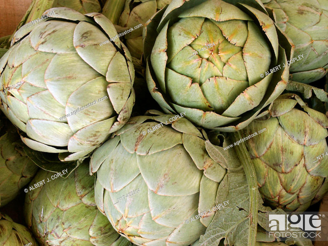 Stock Photo: artichoke.