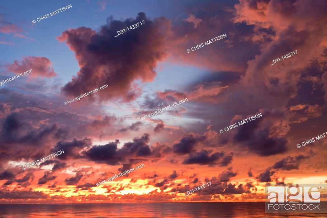 Stock Photo: Dramatic sunset, Sabah, Borneo, Malaysia.