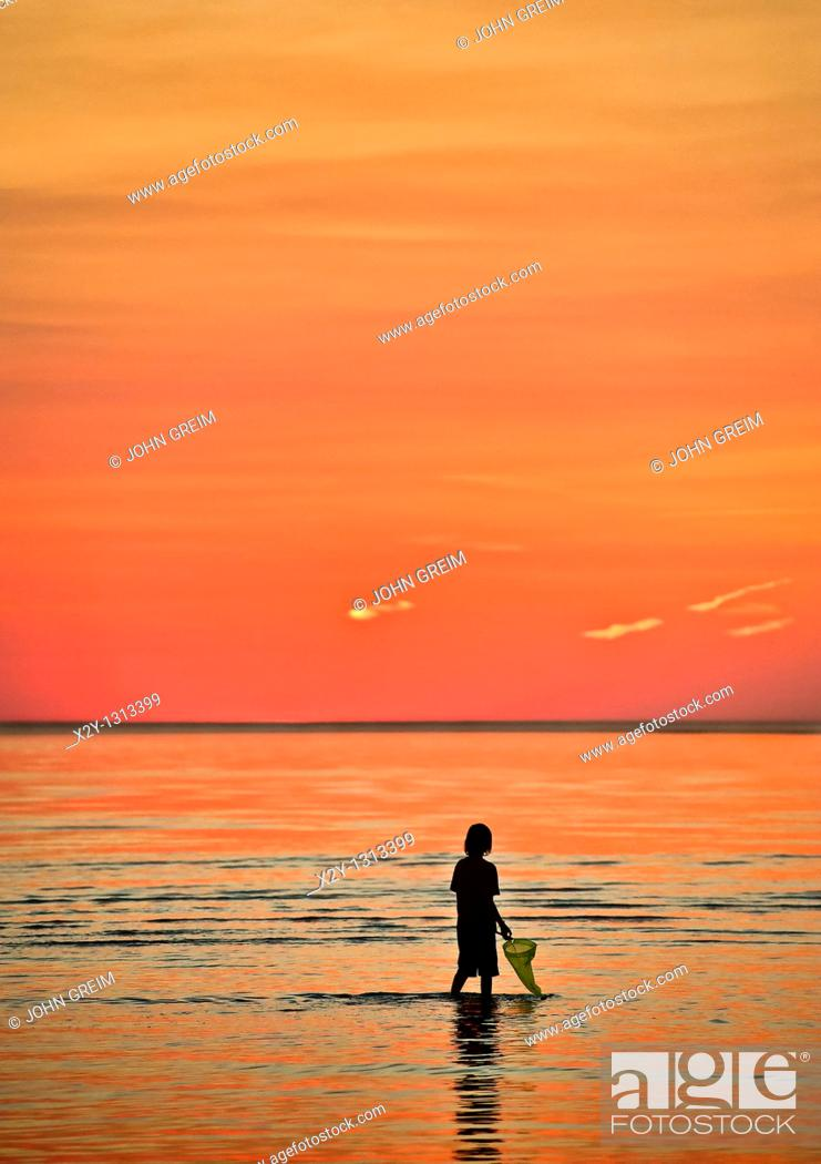Stock Photo: Boy explores the shallow waters with a fishing net  Cape Cod, MA, Massachusetts.