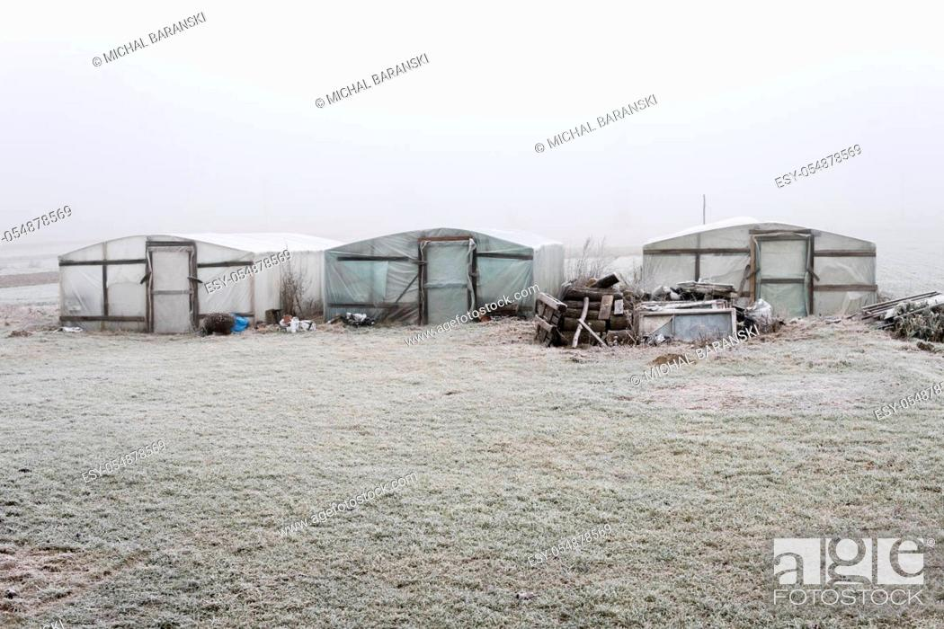 Stock Photo: three greenhouses made from wood and foil standing alone in winter during foggy day.