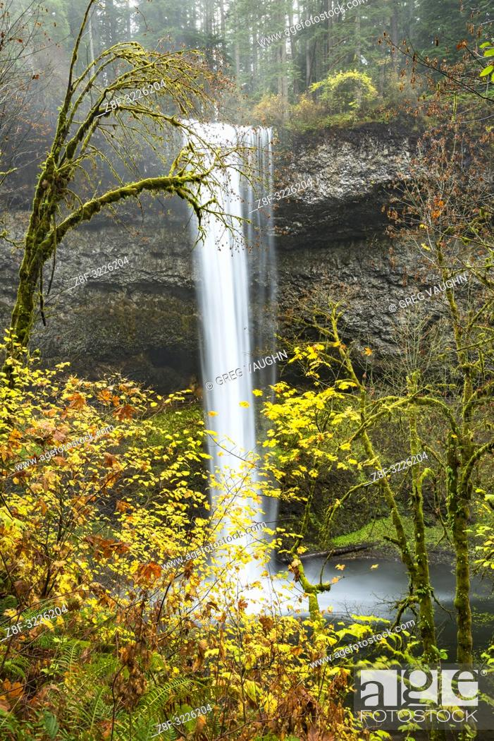 Imagen: South Falls, Silver Falls State Park, Oregon.
