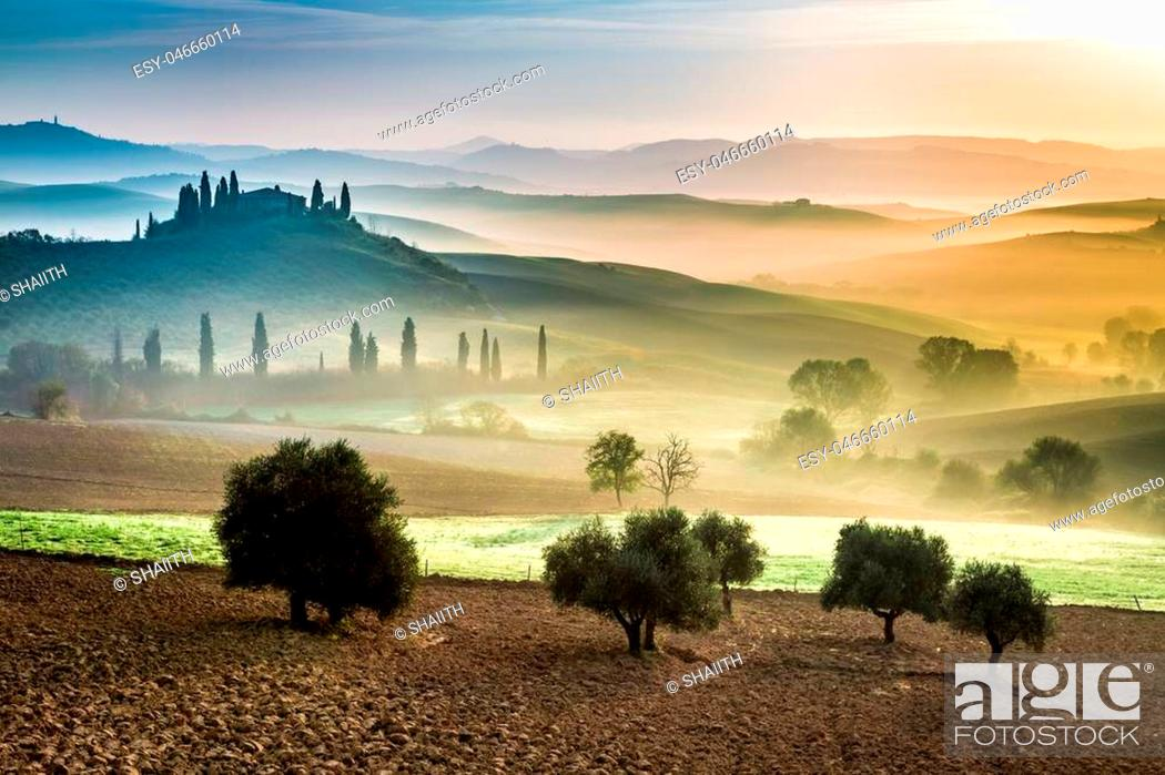 Stock Photo: Gold and green fields in the valley at sunset, Tuscany.