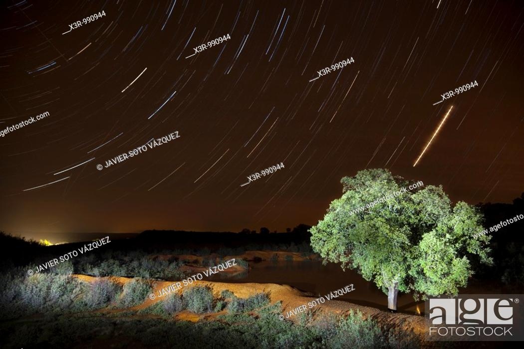Stock Photo: Encina Startrails a night.