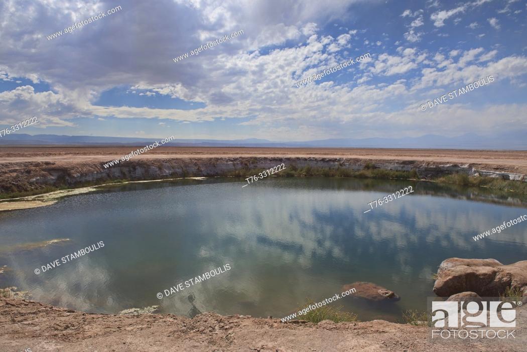 Stock Photo: Ojos de Salar freshwater pool in the desert, San Pedro de Atacama, Chile.