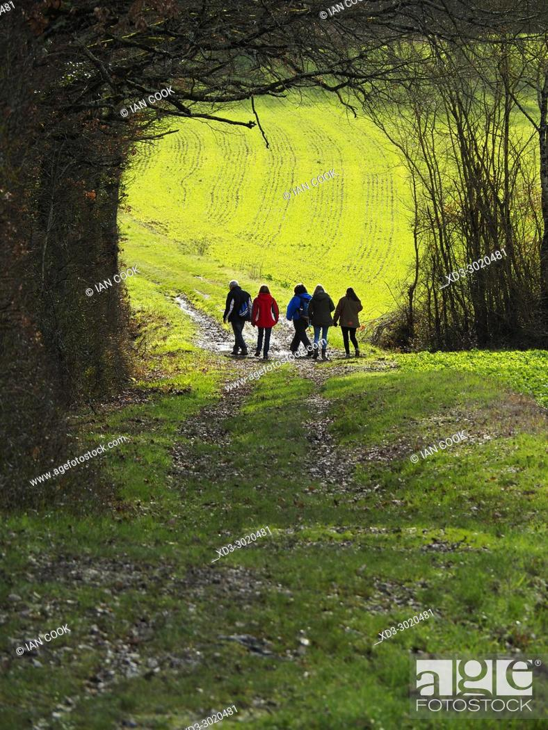 Stock Photo: group of people in a tree tunnel near Iffour, Lot-et-Garonne Department, Aquitaine, France.