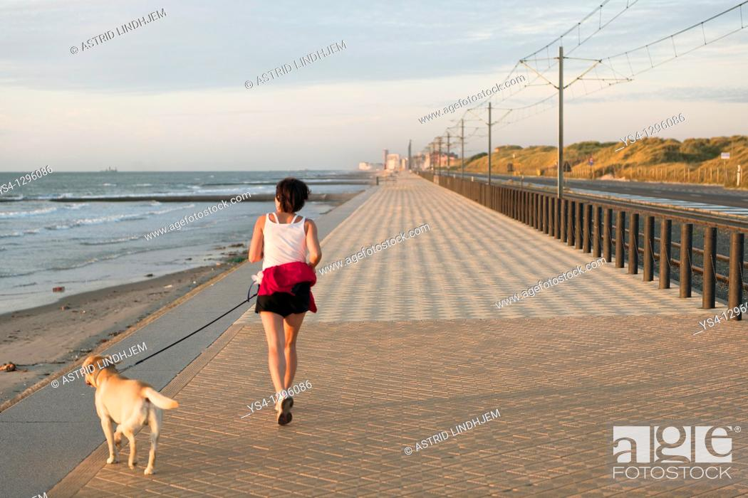 Stock Photo: Woman with dog jogging on the beach.