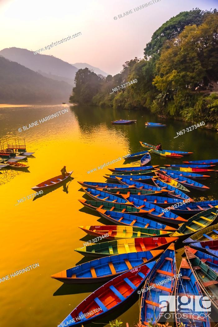 Imagen: Rowboats, Phewa Lake, Pokhara, Nepal.