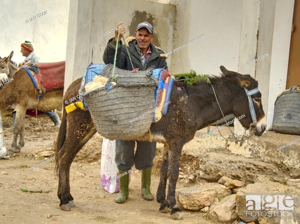 Stock Photo: man loading saddle bags on his donkey at the market at Ida Ougourd Market, near Essaouira, Morocco.