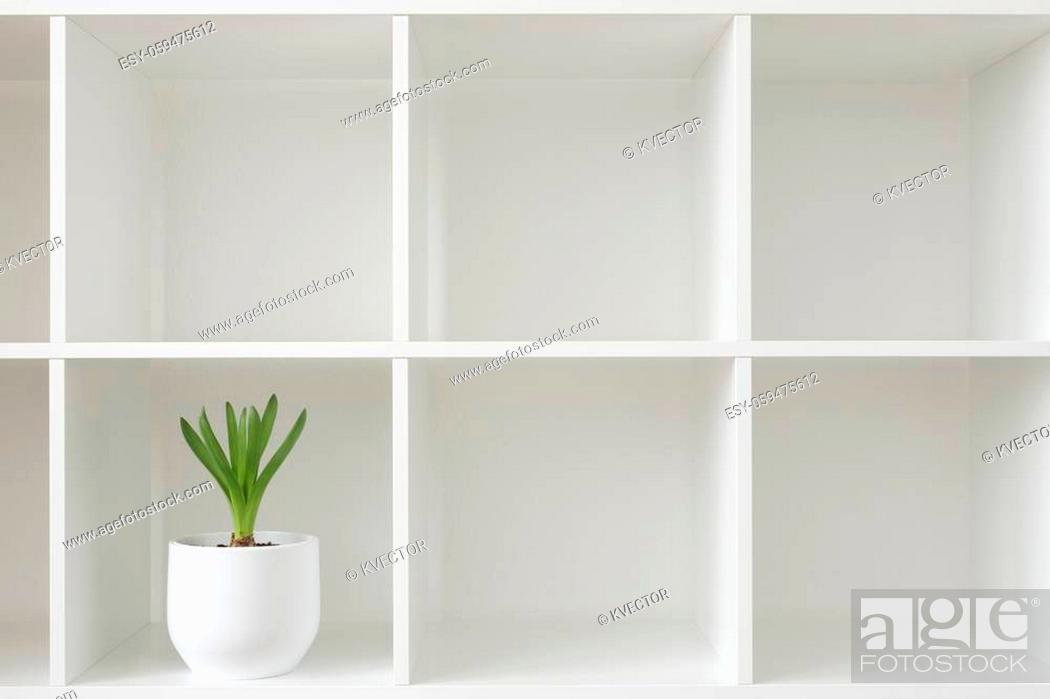 Stock Photo: Hyacinth plant in a white pot. Flower on a rack. Interior background.