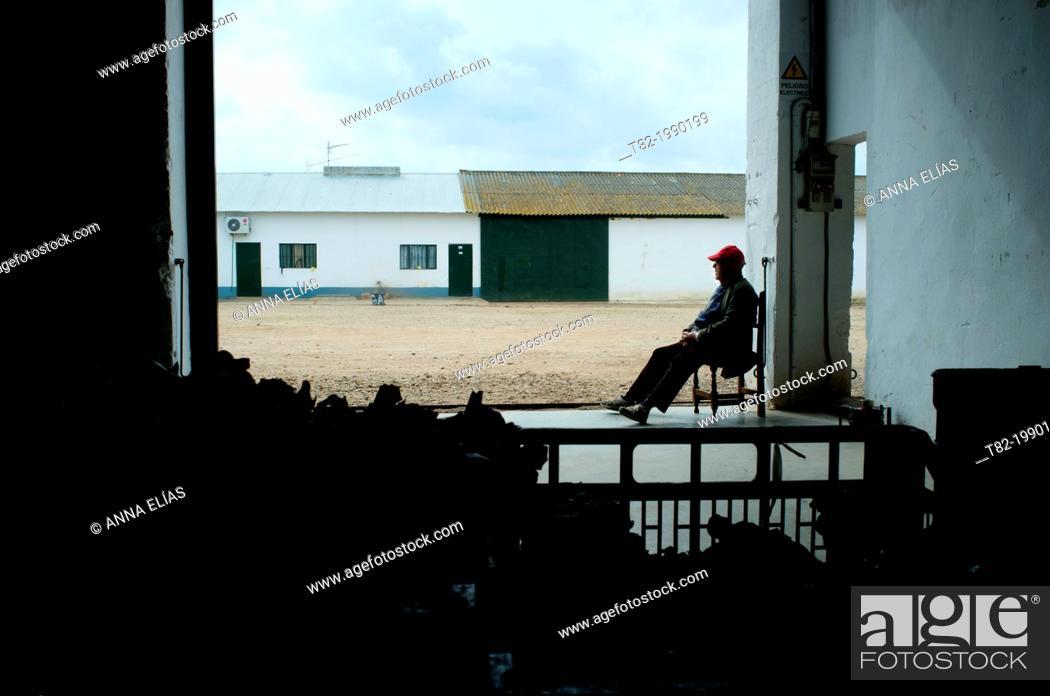 Stock Photo: Silhouette of farmer sitting in Andalusian hacienda, Cordoba, Andalucia, Spain.