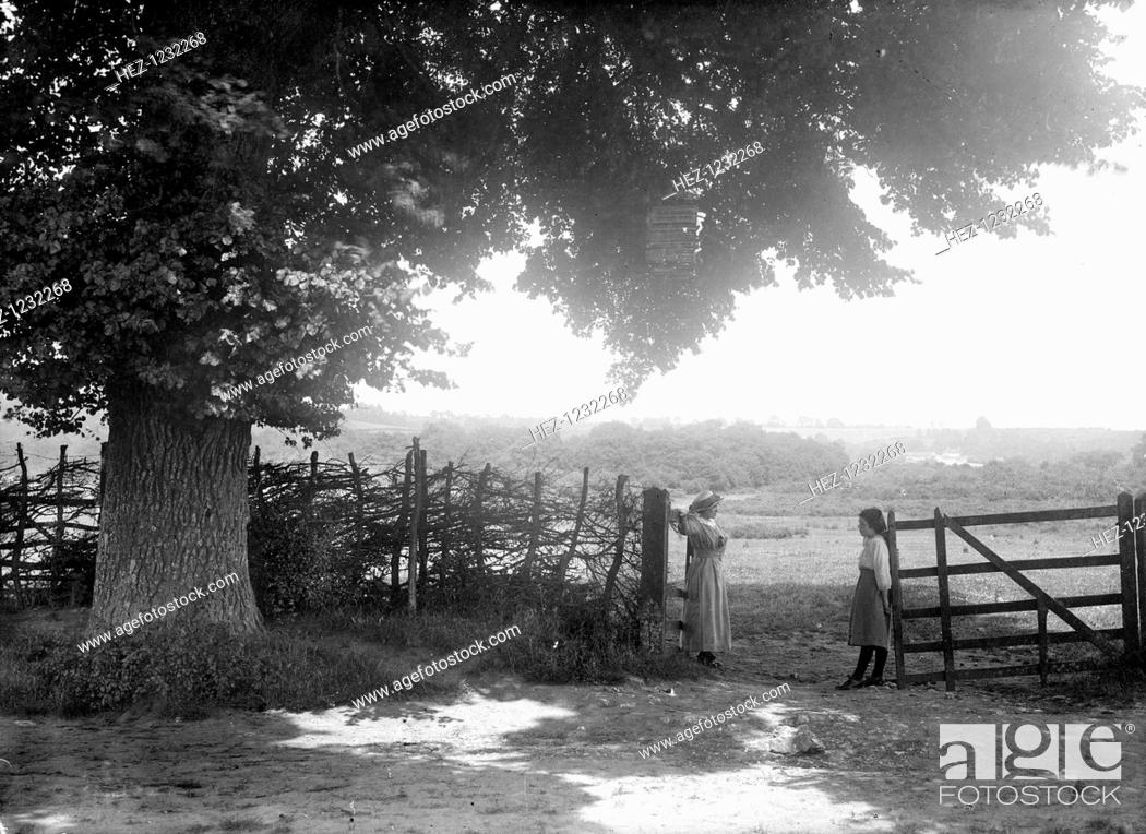 Stock Photo: Two women at a gate in the shade of the overhanging tree, Open Brasnose, Horspath, Oxfordshire, c1860-c1922. A picturesque view of the Oxfordshire countryside.