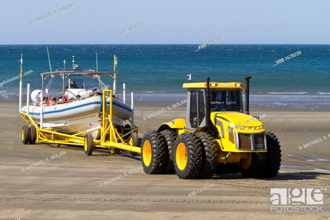 Stock Photo: A commercial whale watching boat being launched across the beach at low tide by tractor in Puerto Pyramides, Golfo Nuevo, Peninsula Valdez, Argentina.