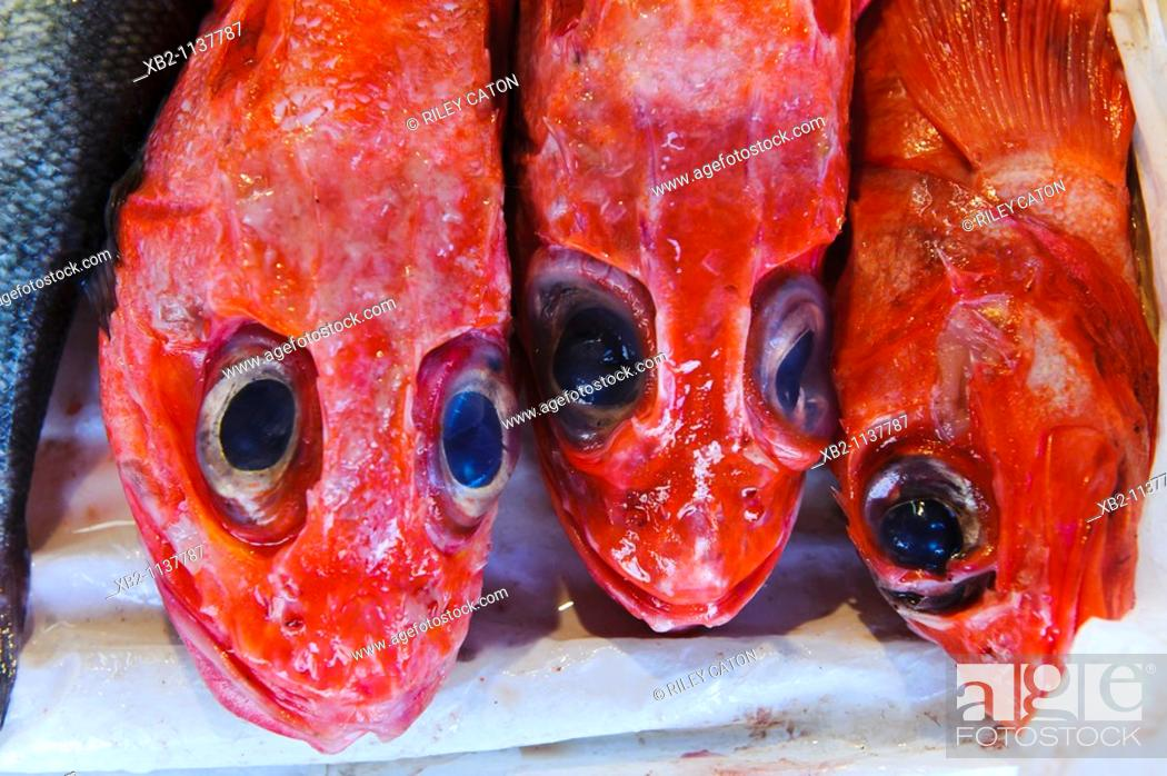 Stock Photo: San Francisco, CA - Red fish in a market in Chinatown.