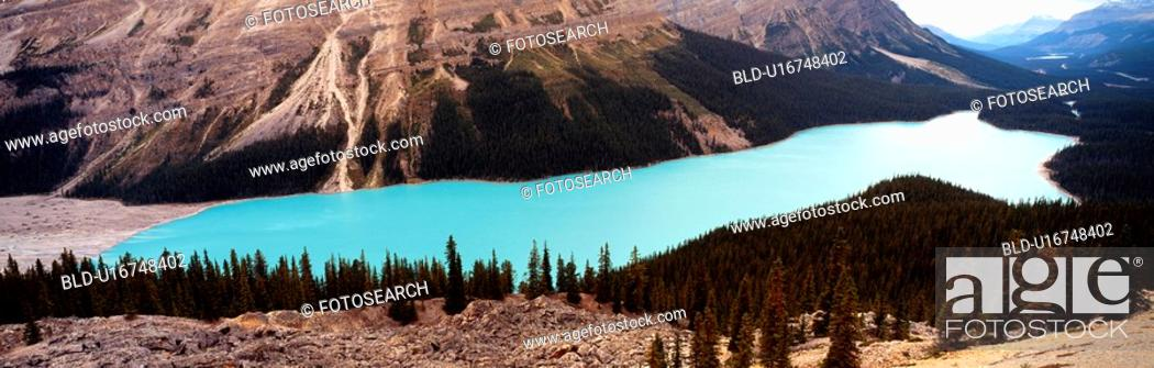 Stock Photo: panorama, lake, forest, tree, park, river.