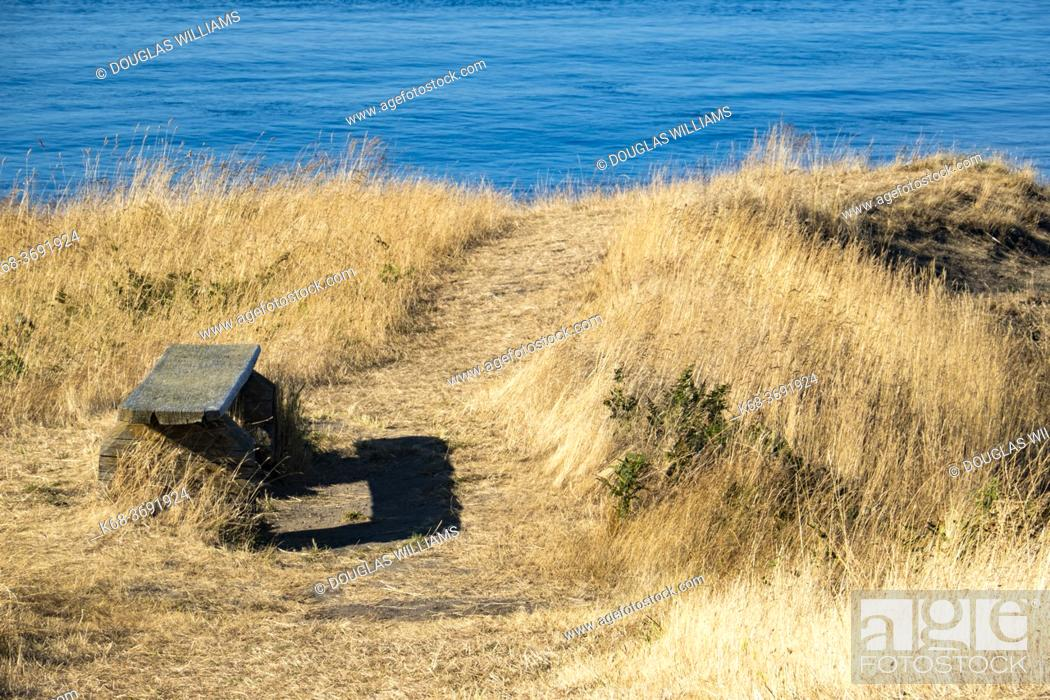 Imagen: A bench at East Point on Saturna Island, BC, Canada.