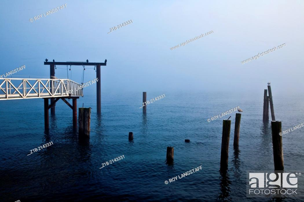Stock Photo: Foggy morning on the Sidney waterfront in British Columbia.