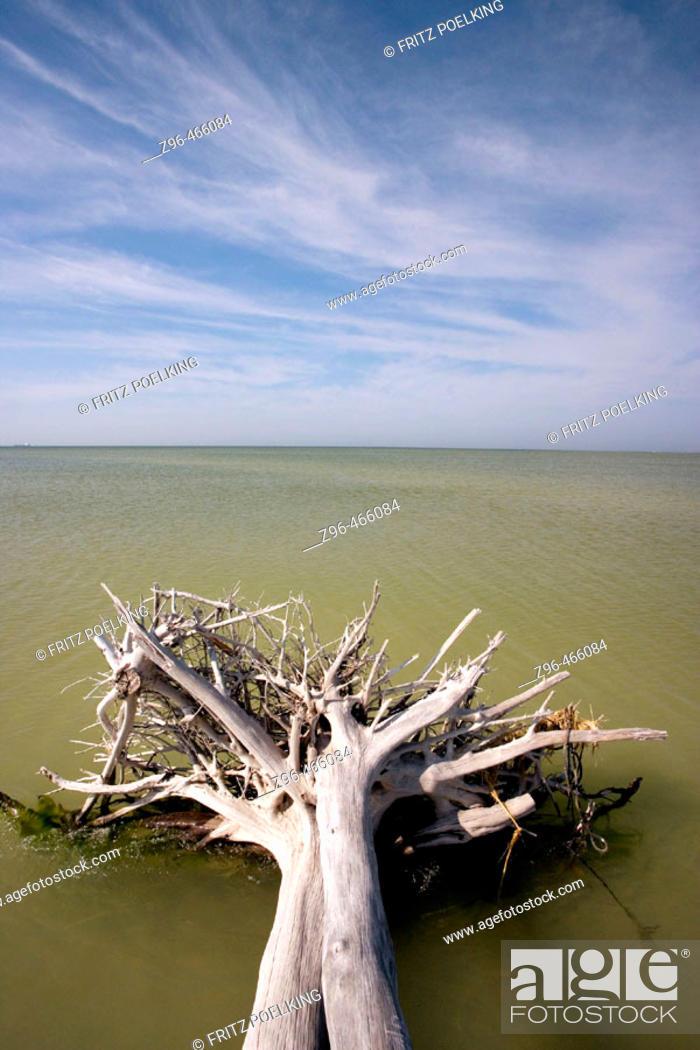 Stock Photo: De Soto Park beach, near Tampa, Florida, USA.