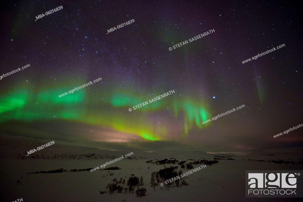 Stock Photo: Northern Lights suture Alta.