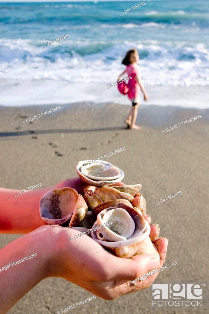 Stock Photo: Seashells handfull.
