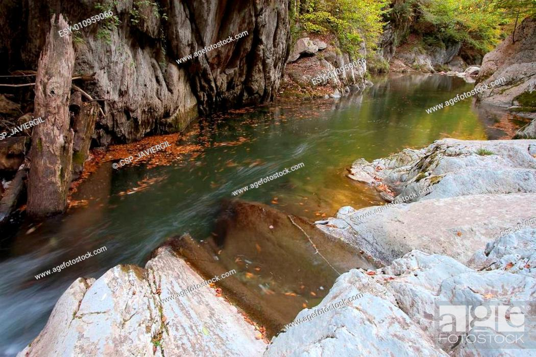 Imagen: River of Irati.