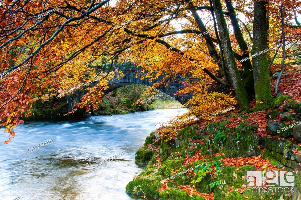Stock Photo: Lake District; Cumbria; national park; England; UK.