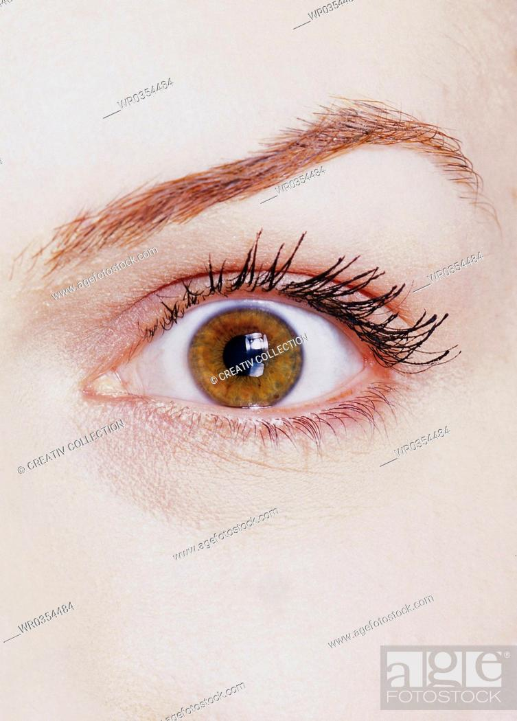 Stock Photo: close-up of a brown eye.