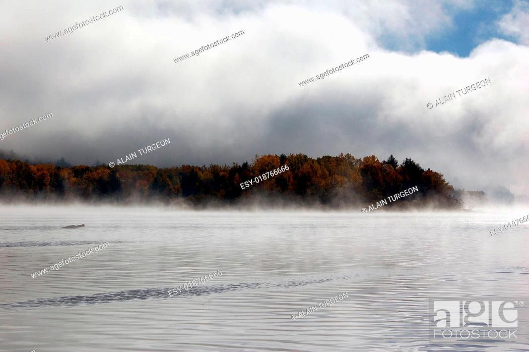 Imagen: Autumn landscape.