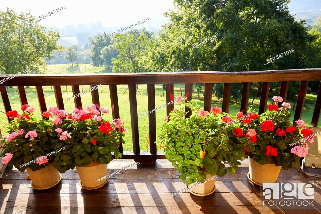 Stock Photo: Balcony with plants and flowers, Typical Basque farmhouse, Event Celebration, Hondarribia, Gipuzkoa, Spain.