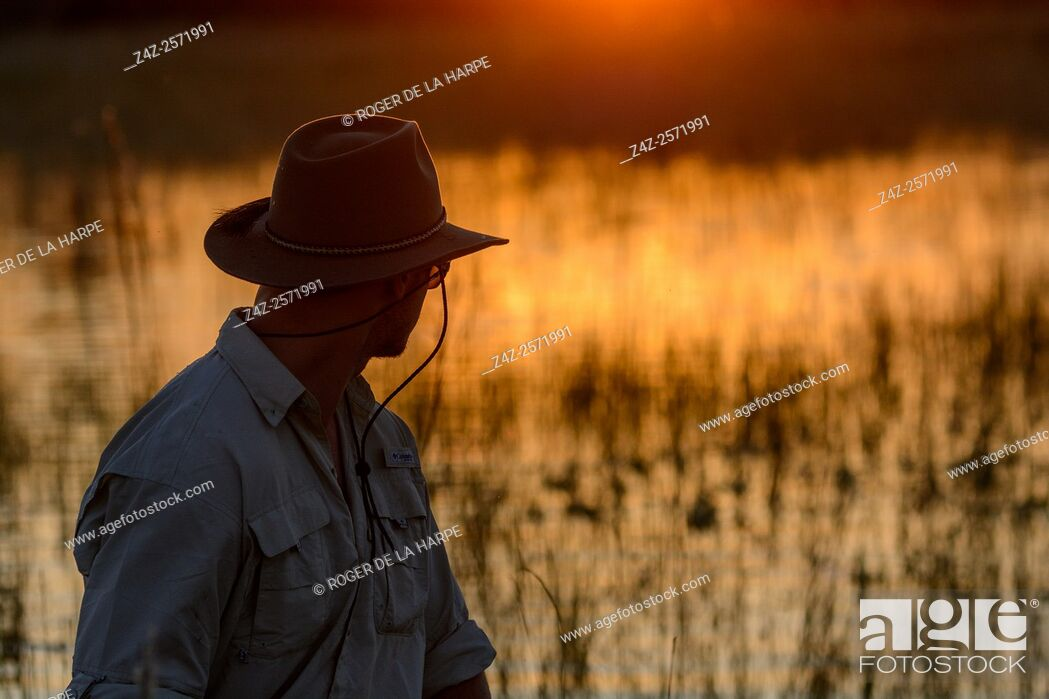 Stock Photo: Horseback riding safari with African Horseback Safaris. Okavango Delta. Botswana.