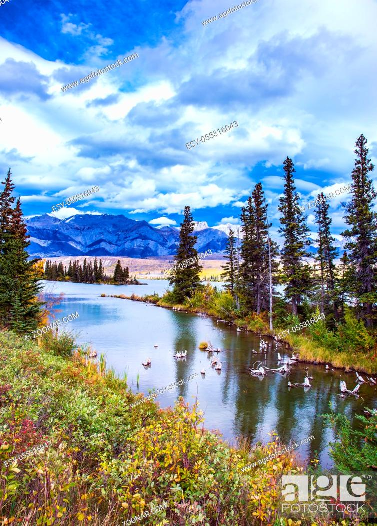 Photo de stock: Rocky Mountains, Canada. Shallow-water lakes, picturesque firs and distant mountains. Lush clouds are reflected in the smooth water.